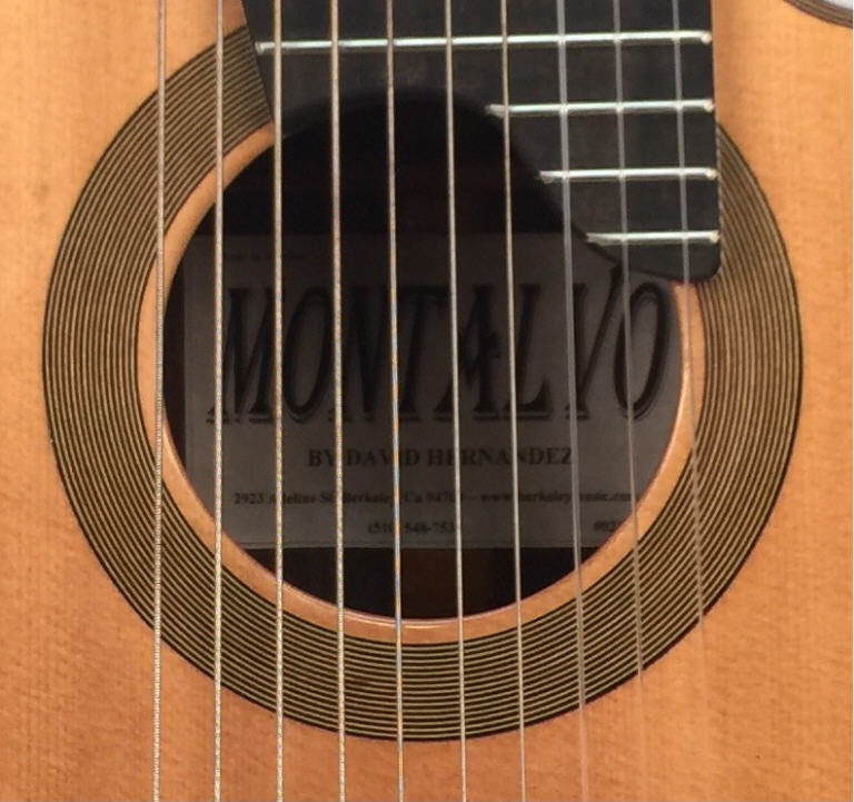 10 String Classical Guitar