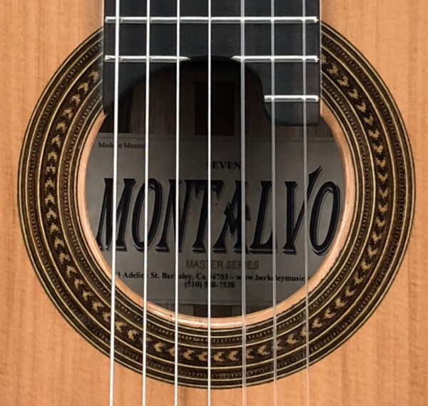 Seven String Nylon