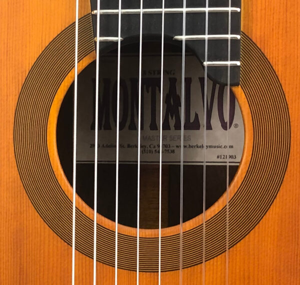 Montalvo 8 String