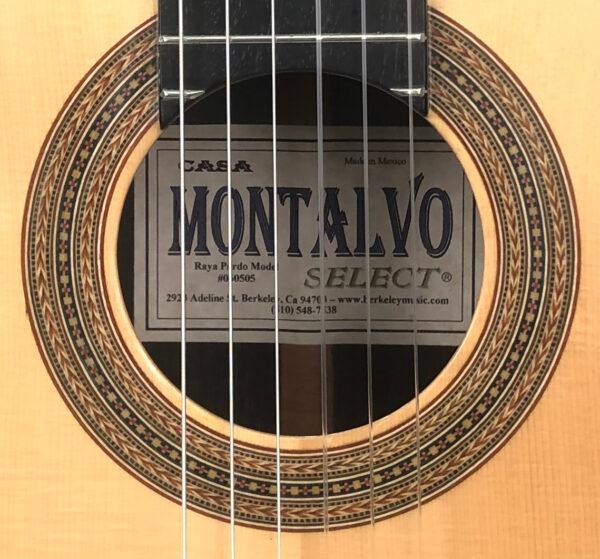 Montalvo Raya Pardo Model Classical